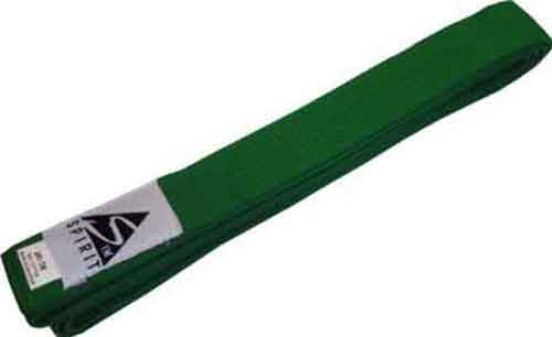 martial arts green belt judo karate jujitsu taekwondo adults 280cm 4101680